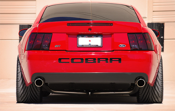 Ford Mustang Lease >> 2004 Terminator Cobra