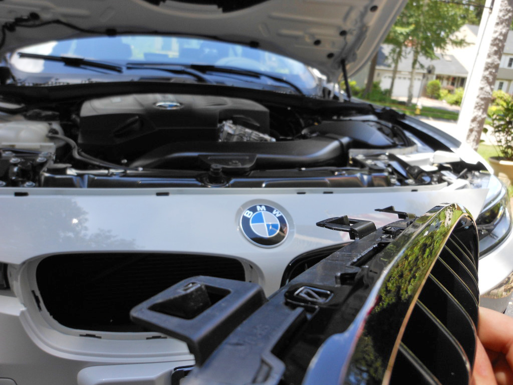 Name:  f30grille12.jpg