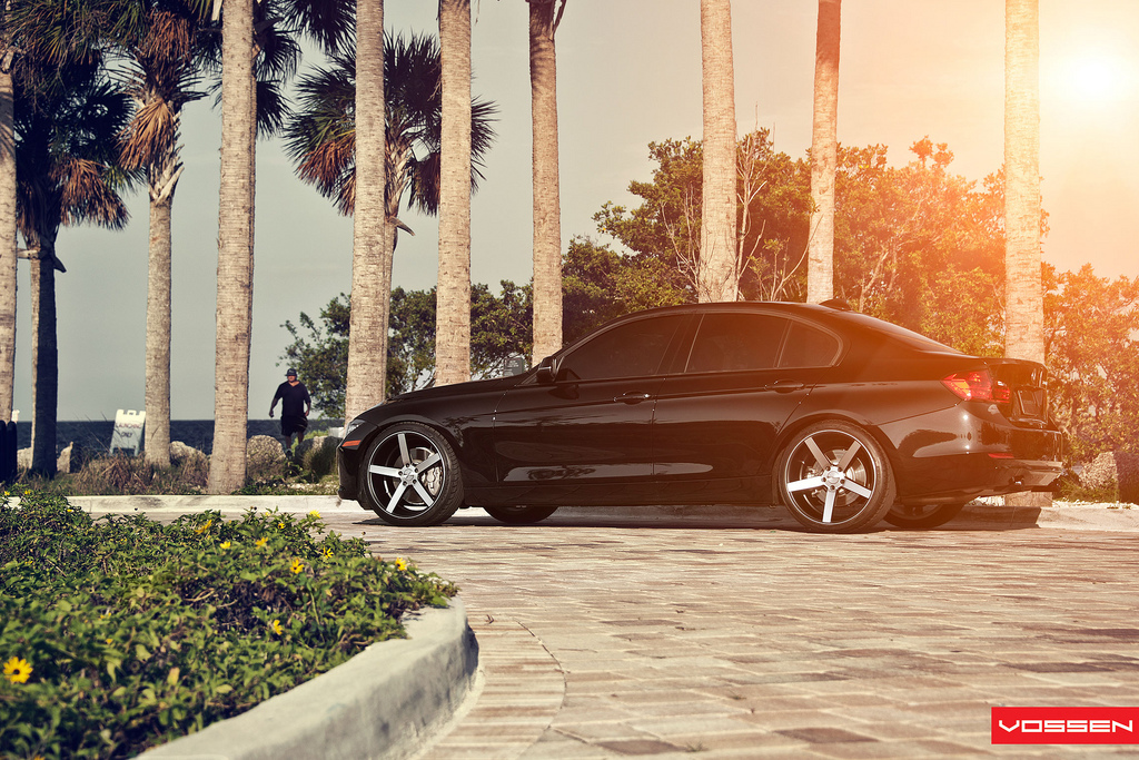 Name:  075-Vossen.jpg
