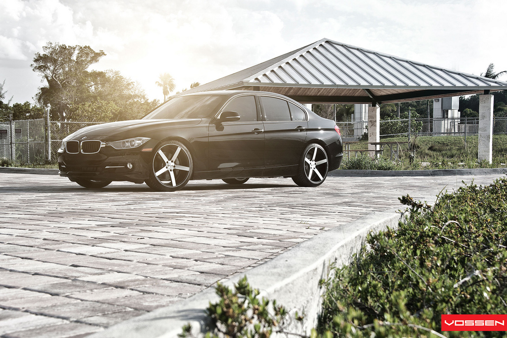 Name:  071-Vossen.jpg