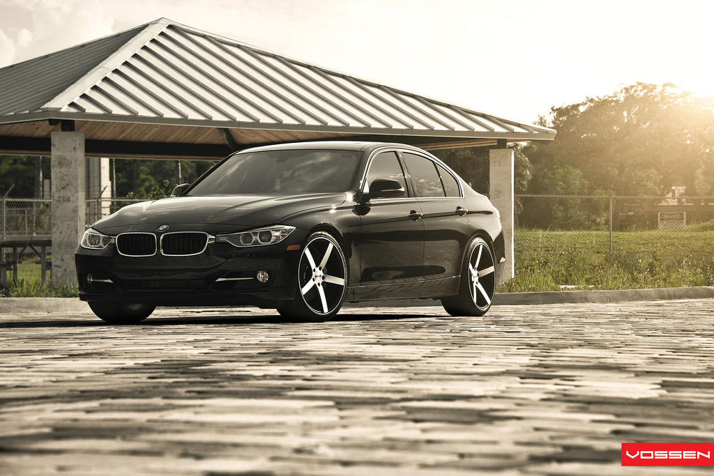 Name:  072-Vossen.jpg