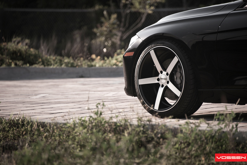 Name:  078-Vossen.jpg