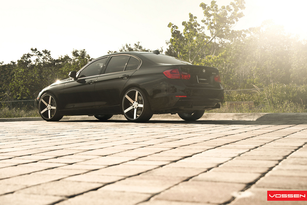 Name:  080-Vossen.jpg